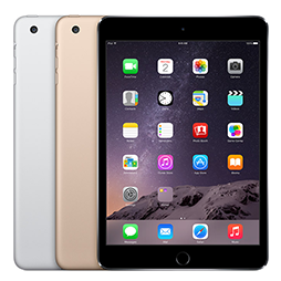 iPad mini 3 / 2 / 1