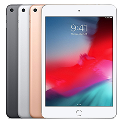 iPad mini 5 / 4